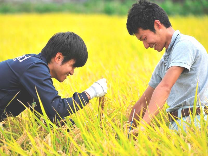「グリーンドクター制度」で農業・環境技術を担う人材を育成